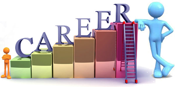 Career At Synergex International Pvt Ltd